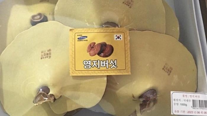 nam-linh-chi-han-quoc